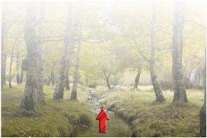 efek kabut dengan photoshop