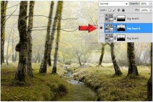 efek kabut pada photoshop